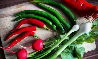 moulin-a-legumes-manuel